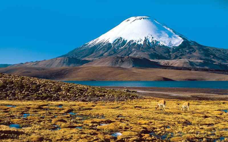 Самый высокий вулкан в мире
